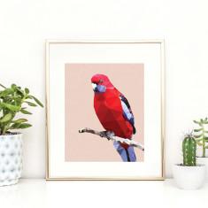 Geometric Crimson Rosella art print