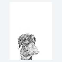 Miniature Dachshund Print