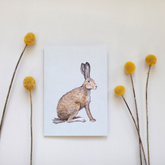 Pack of 4 Hare Watercolour Illustration Greeting Cards