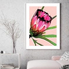 Protea peach art print (various sizes)