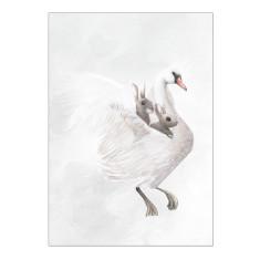 Swan Rabbits print