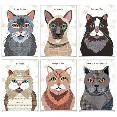 Cat Greetings card (Set of 6) 9 designs avaialble
