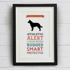 Australian Cattle Dog Breed Traits Print