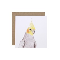 Cockatiel greeting card (pack of 5)