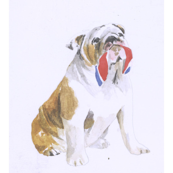 British Bulldogs love to snack on Union Jacks
