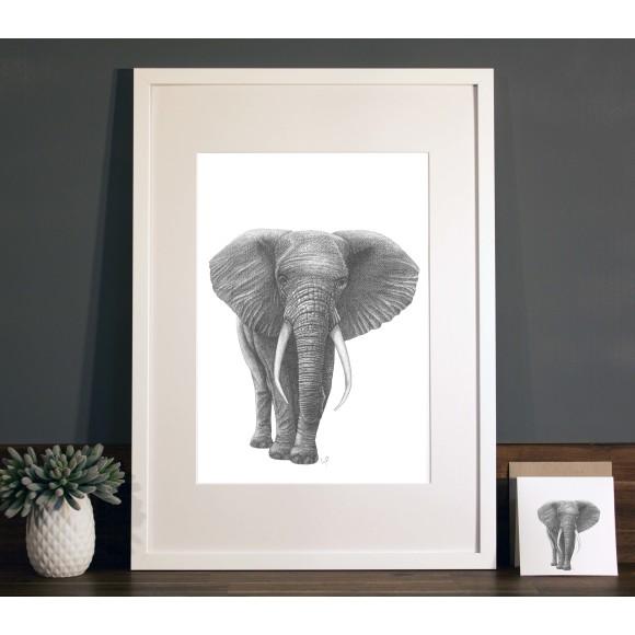 Elephant print A3 white frame