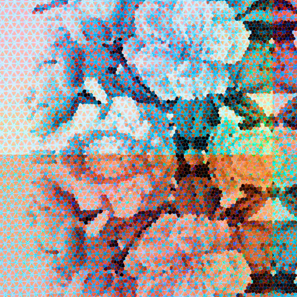 close up Floral Play 2