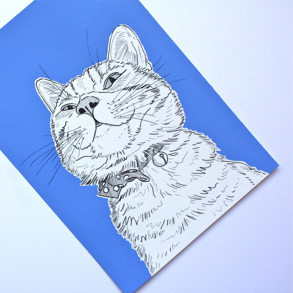 Cat portrait ( Baby blue )