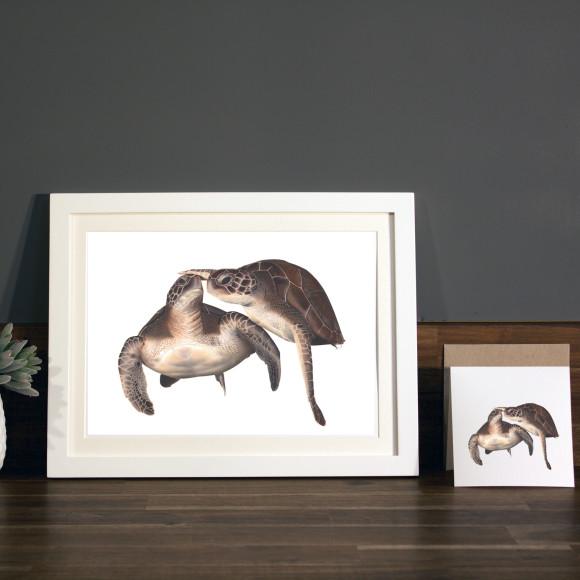 Turtles print A4 white frame