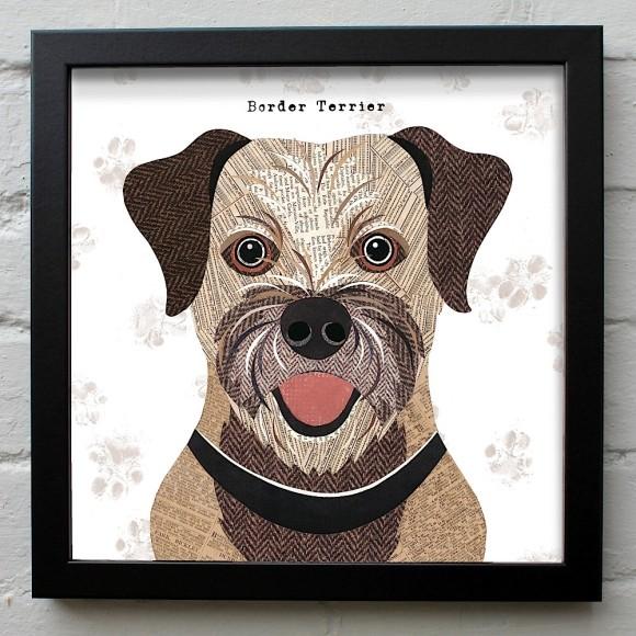 6. Border Terrier