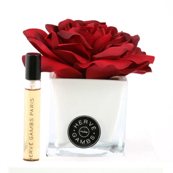 Red rose diffuser