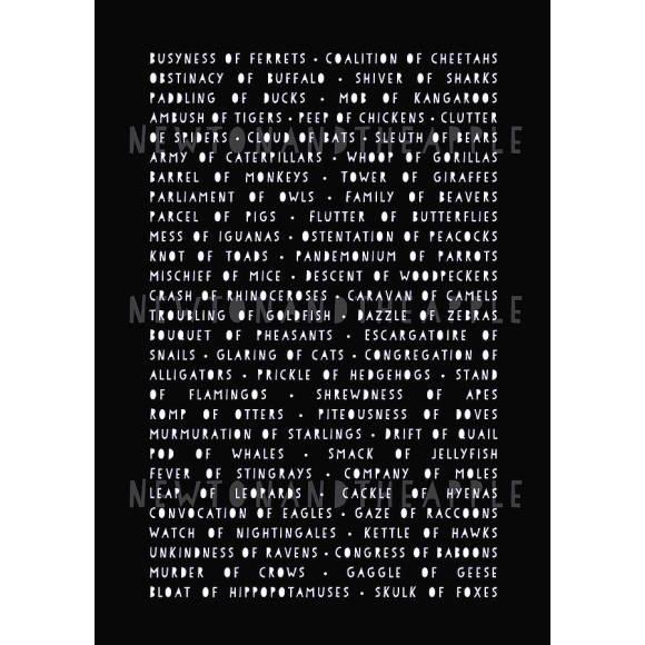 Collective animal nouns art print