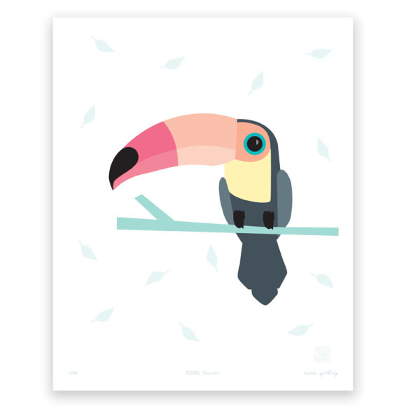 Little Toucan