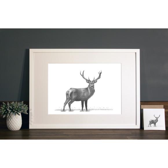 Stag print A3 white frame