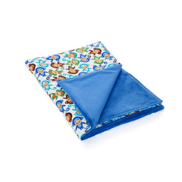 Plush minky blue blanket