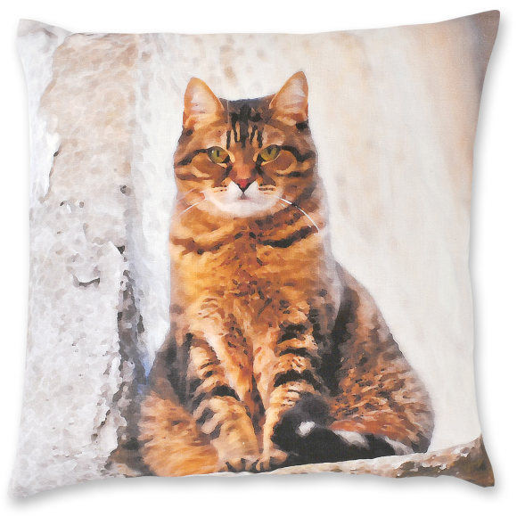 Avignon Cat linen cushion cover
