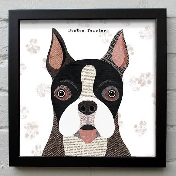7. Boston Terrier