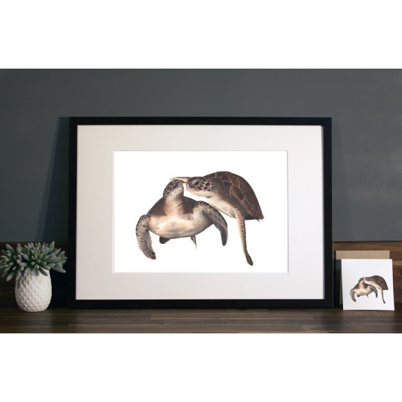 Turtles print A3 mocha frame