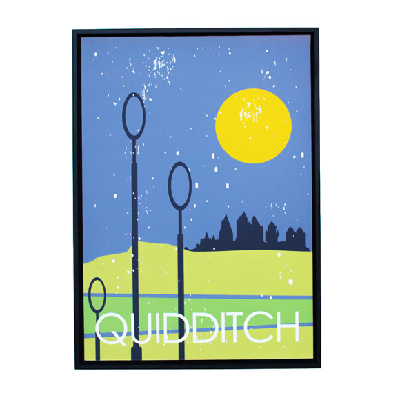 Quidditch in Black Floater