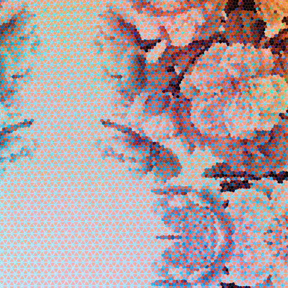close up Floral Play I