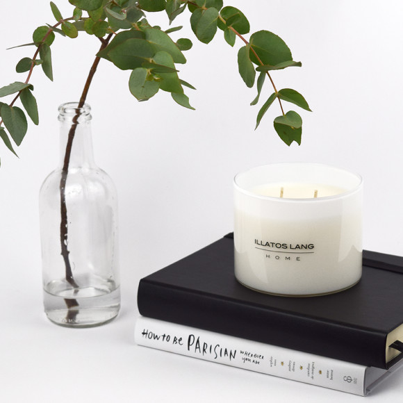 LUXURY SOY CANDLE (VARIOUS SCENTS)