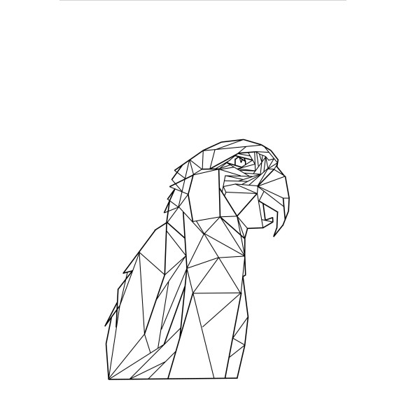 Geo Macaw Print