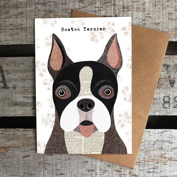 7. Boston Terrier