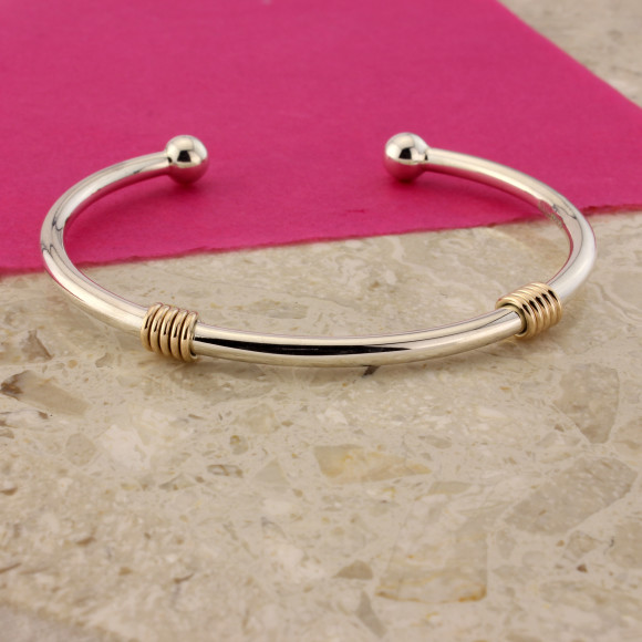 Silver Serenade & 9ct Gold Torq Bangle