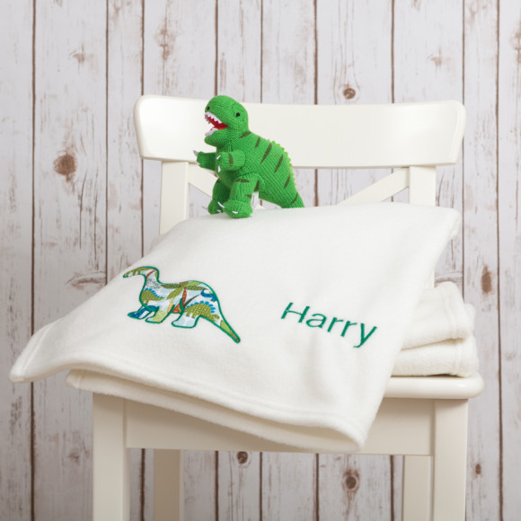 Dinosaur Baby Blanket