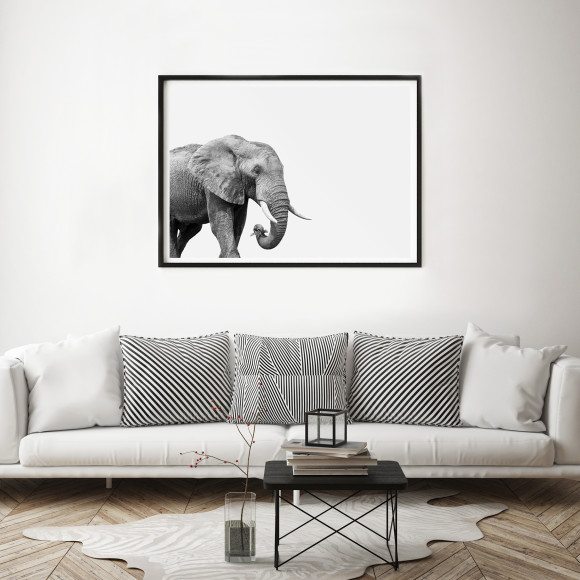 Hector Rose Elephant Limited Edition Fine Art Print