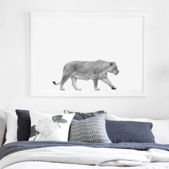 Hector Rose Lioness Limited Edition Fine Art Print