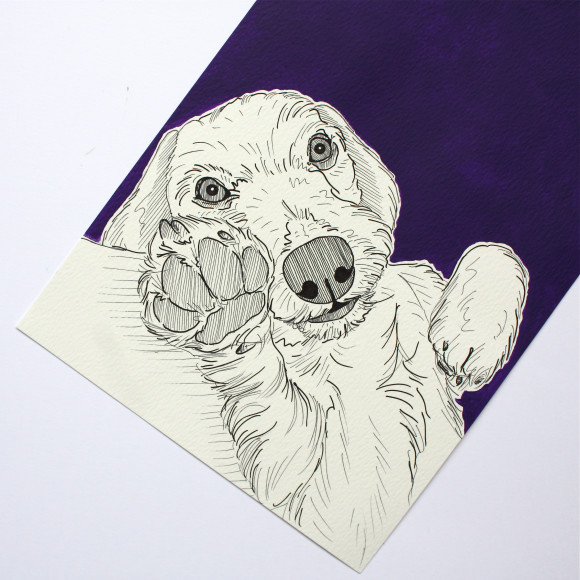 Dog portrait ( Purple )