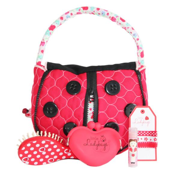 Ladybug gift pack