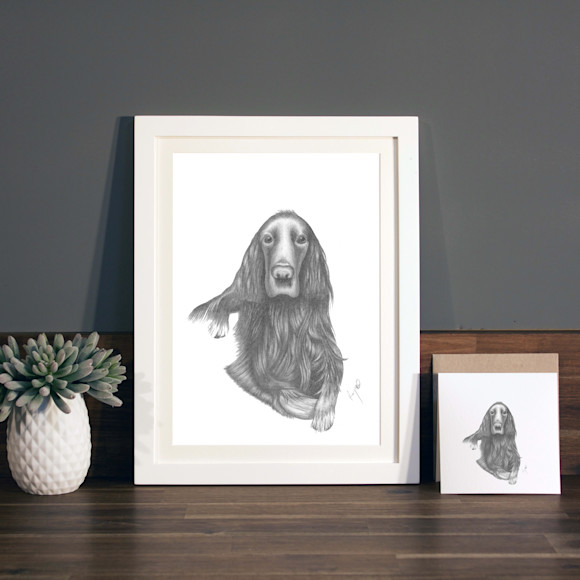 Graphite illustration with A4 white frame