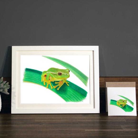 Frog print A4 white frame