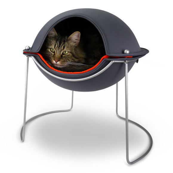 Hudson the cat testing the Hepper POD