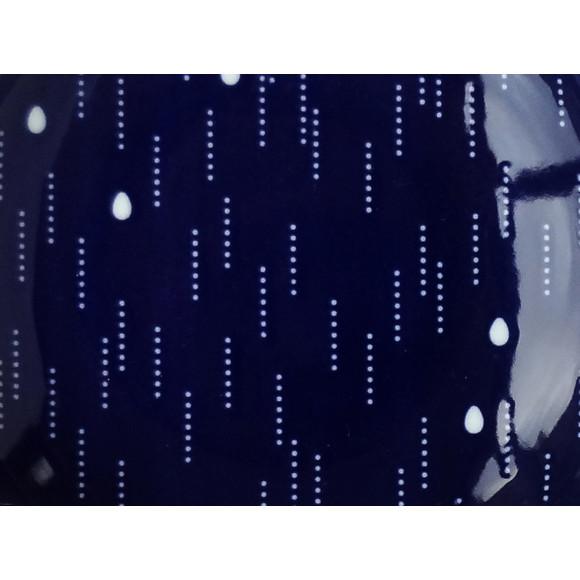 Precious Rain