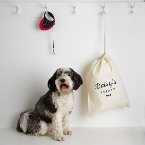 Storage bag for dog