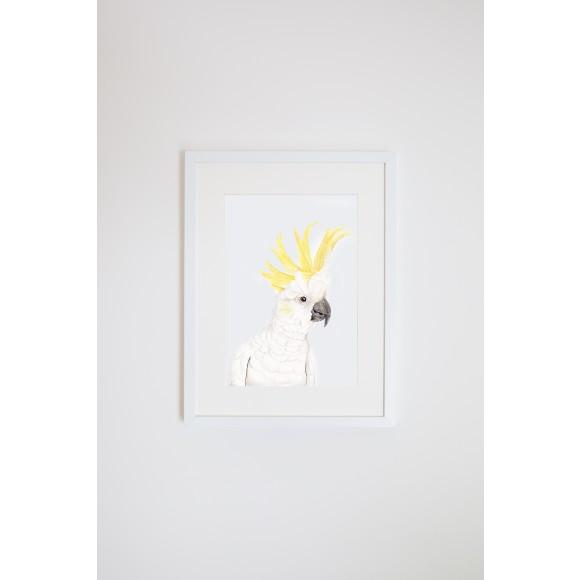 Cockatoo Art Prints
