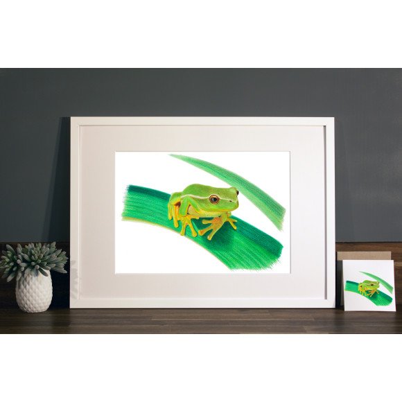 Frog print A3 white frame