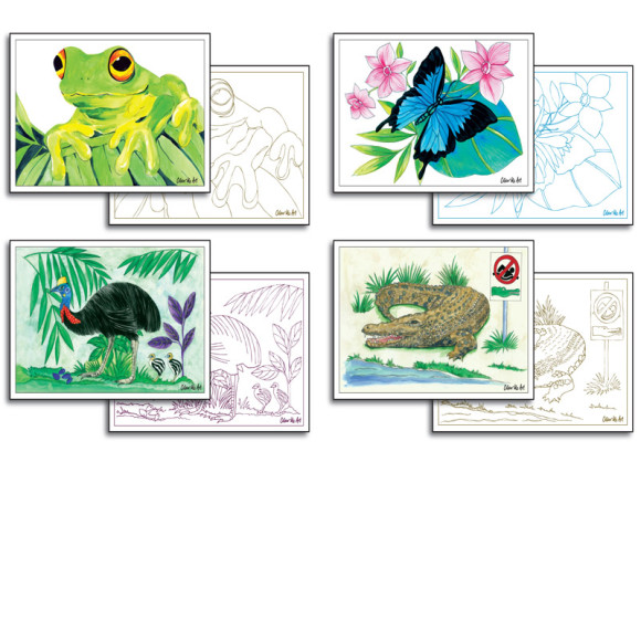 Rainforest cards to colour