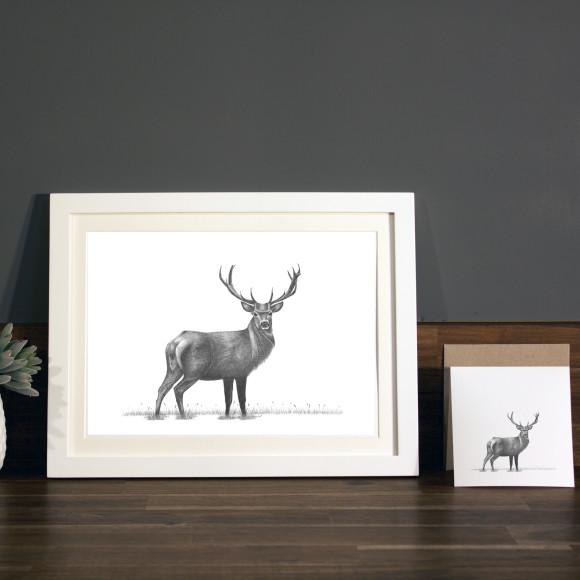 Stag print A4 white frame