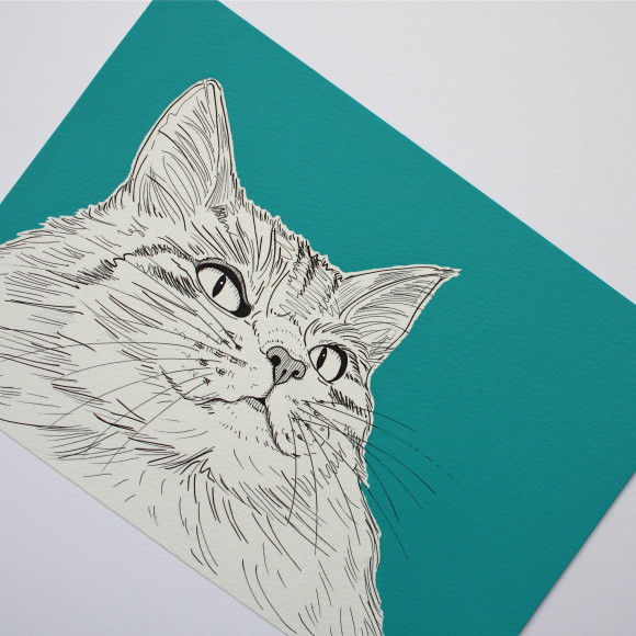 Cat portrait ( Bright blue / teal )