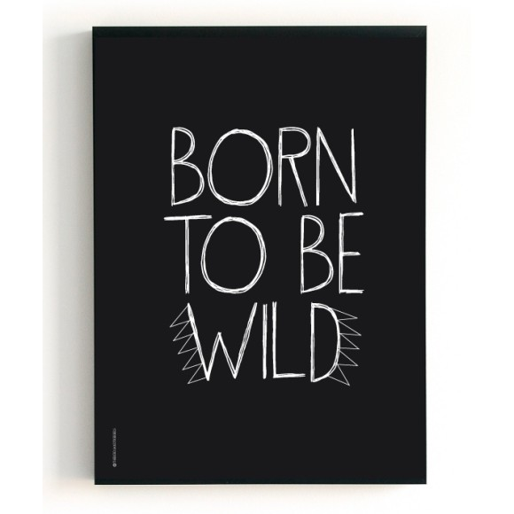Born to be wild front