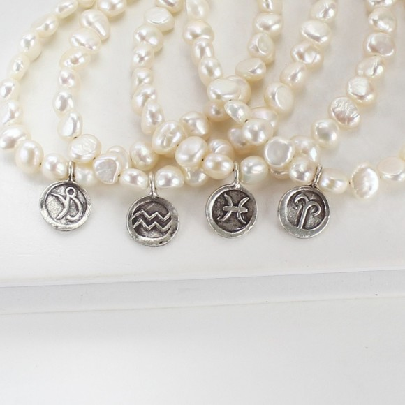 capricorn,aquarius, pisces, aries