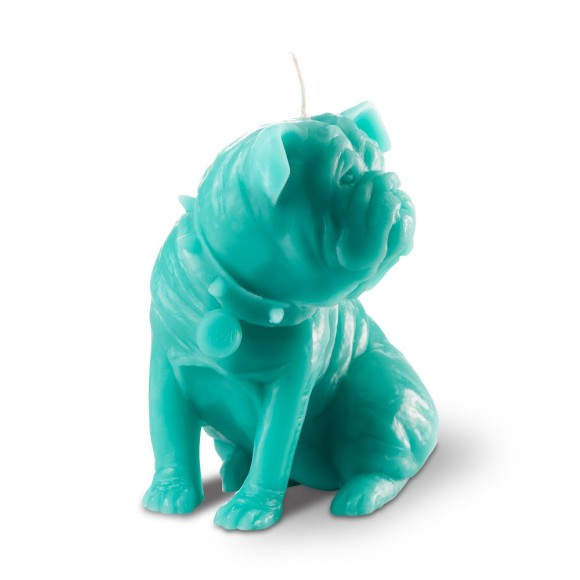 Sam - turquoise