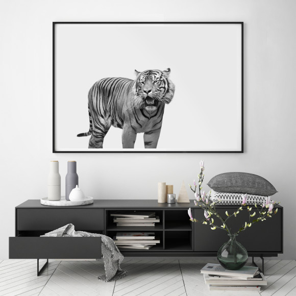 Hector Rose Tiger Limited Edition Photographic Print