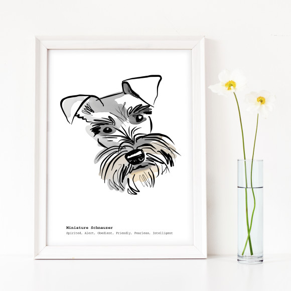 Schnauzer print with standard breed traits text