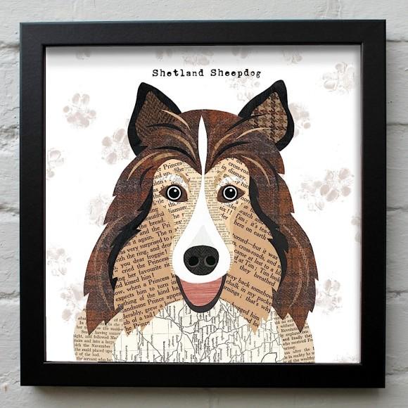 31. Shetland Sheepdog