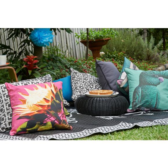 Backyard picnic and Bambambu